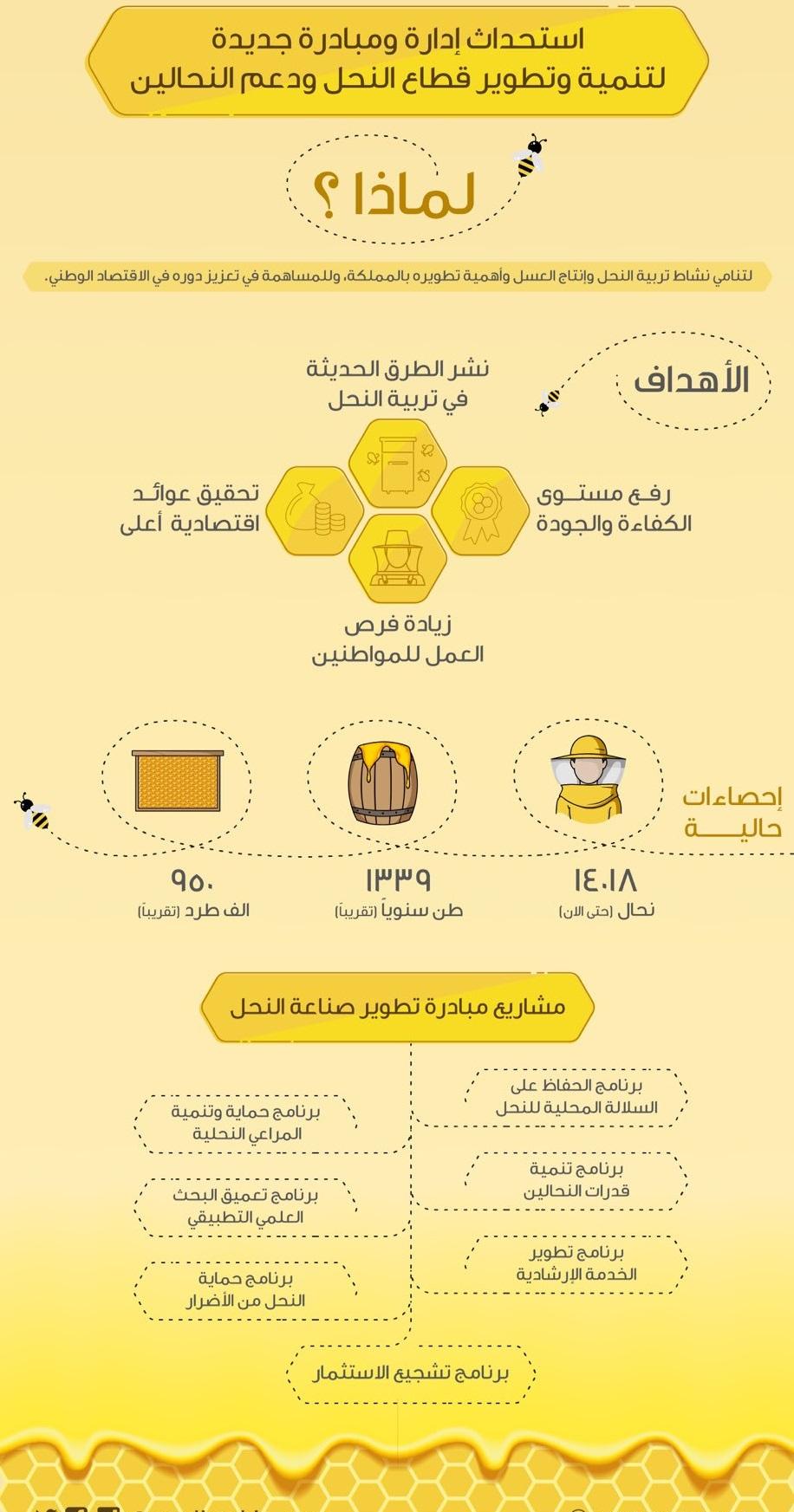 تنمية وتطوير قطاع النحل ودعم النحالين